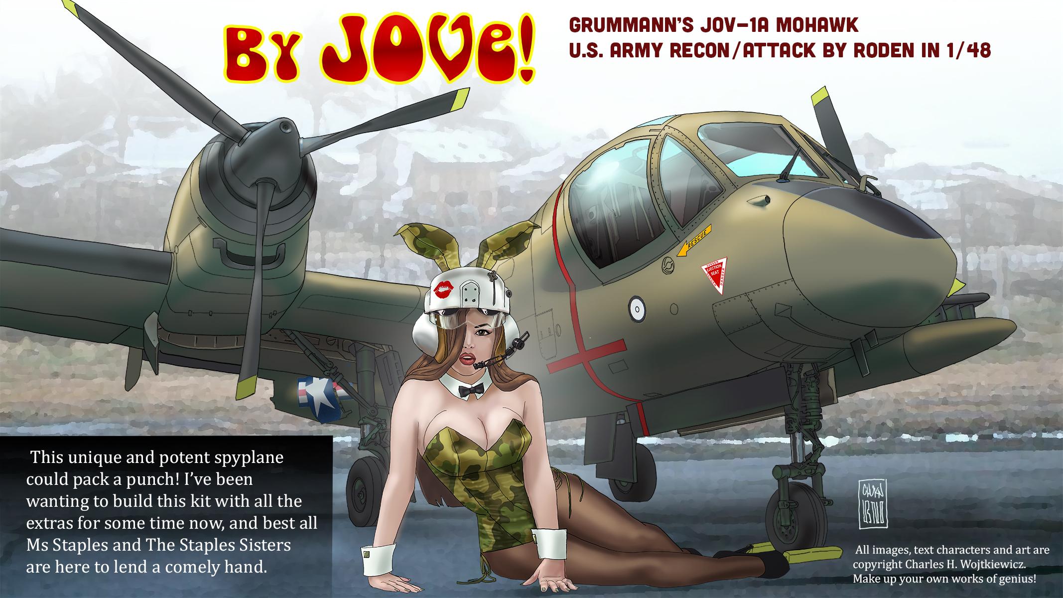 Mohawk_001.jpg